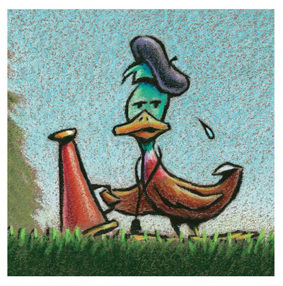 Director Duck